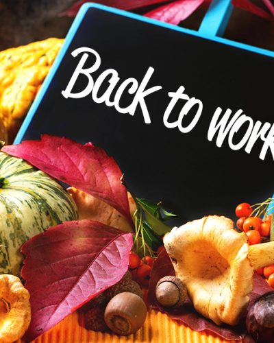 Back to work: Top 5 things to do this fall